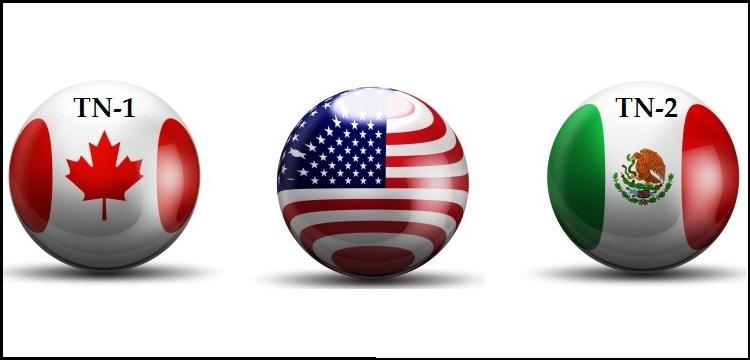 TN Visa for NAFTA professionals